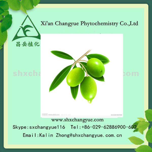 20% Olive Leaf Extract powder