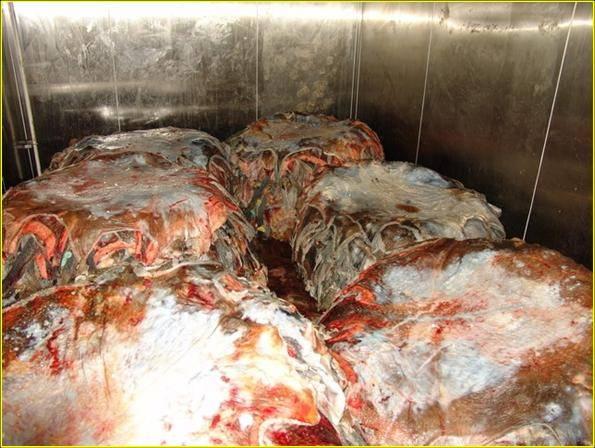 Ostrich Skin on refrigerator room  at -1° Celcius