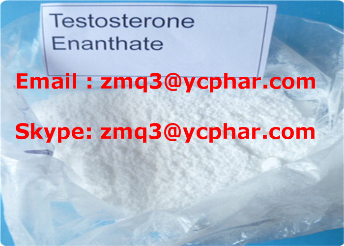 Testosterone Enanthate Injectable Steroids Primoteston Depot For Cutting Cycle
