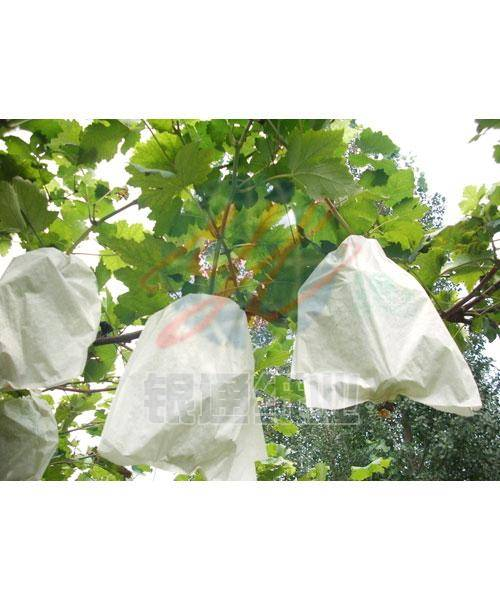 fruit protection paper bag for grape protection bag