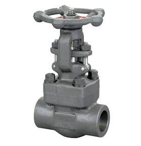 Female threaded and socket welded gate valves