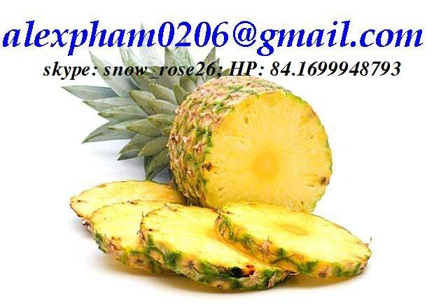 pineapple/ frozen pineapple chunks/ pineapple residue feed/ pineapple slices/canned fruit