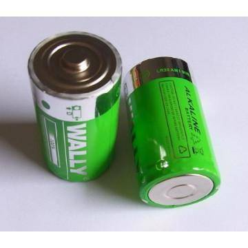 Alkaline battery LR20 1.5V