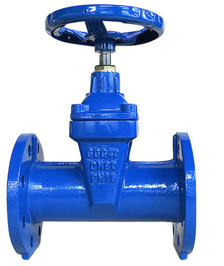 F5 non-rising stem resilient seated gate valve