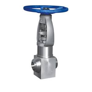 Forged steel globe valve SDFJ61Y-P61-F91 of power plant valve