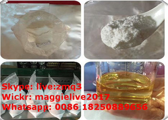 Anabolic Steroid White Powder Mestanolone Ace for Muscle Building