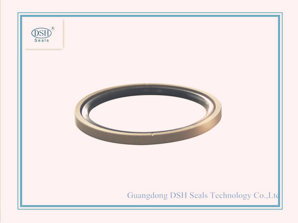 PTFE Slide Ring for Piston/DSF