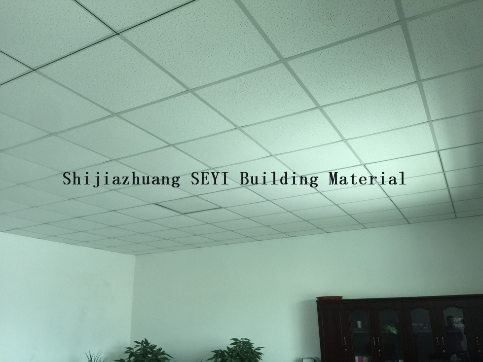 Manufacturer of Ceiling T-Grids/T-Bars