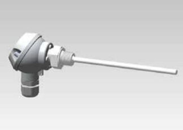 Form J Screw-in RTD temperature probes(TM1402)