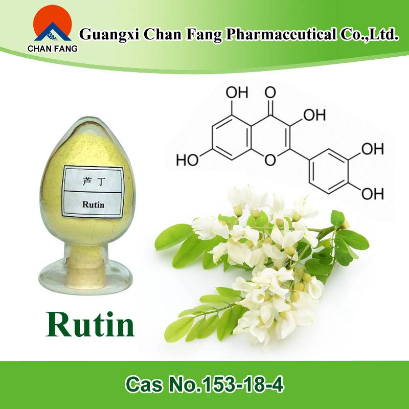 GMP manufacturer supply sophora japonica extract 98% rutin(Yellow powder)