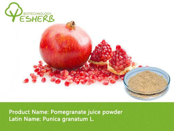 free sample organic Pomegranate seed powder