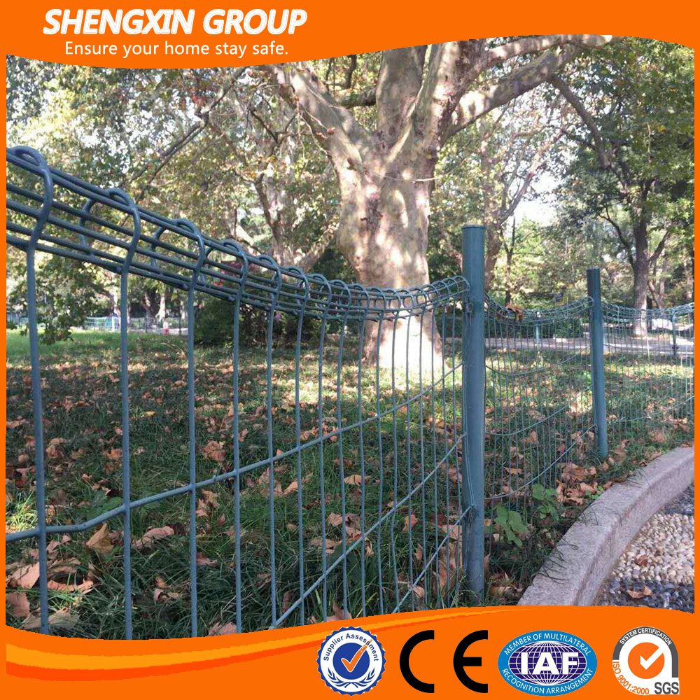 Ornamental double loop wire fence with cheapest price