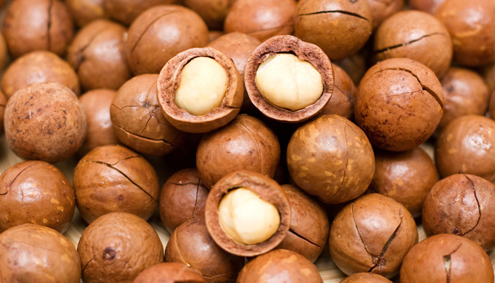 Macadamia Nuts best price 2017