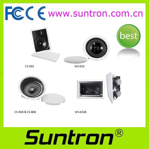 Suntron professional Ceiling Speakers
