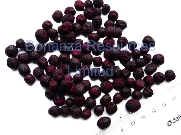 Freeze Dried Blueberry