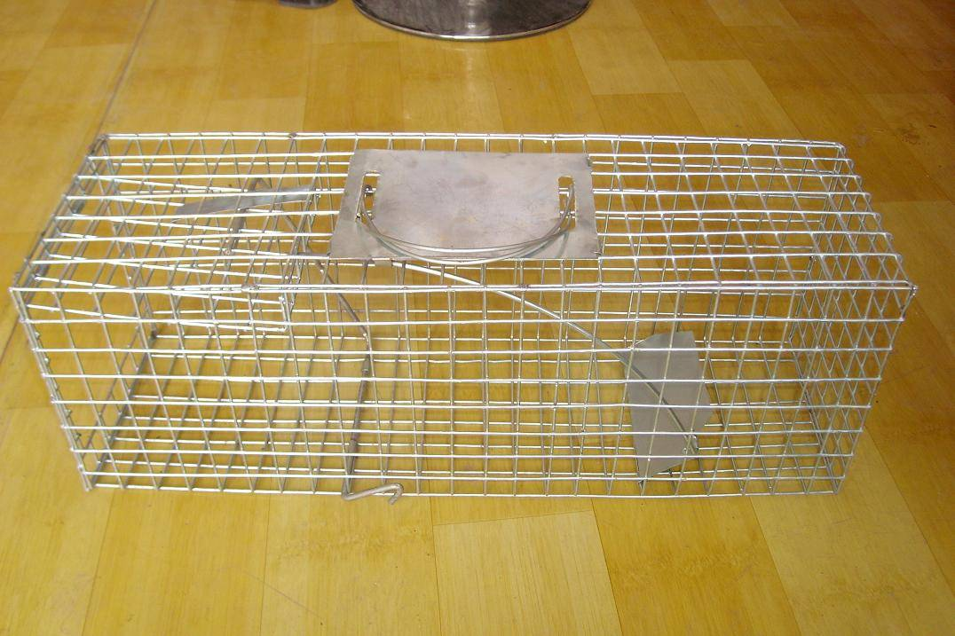 The Single Door spring loaded ,Trigger Trap cage---Need Bait