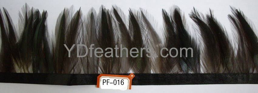 feather trimming-016