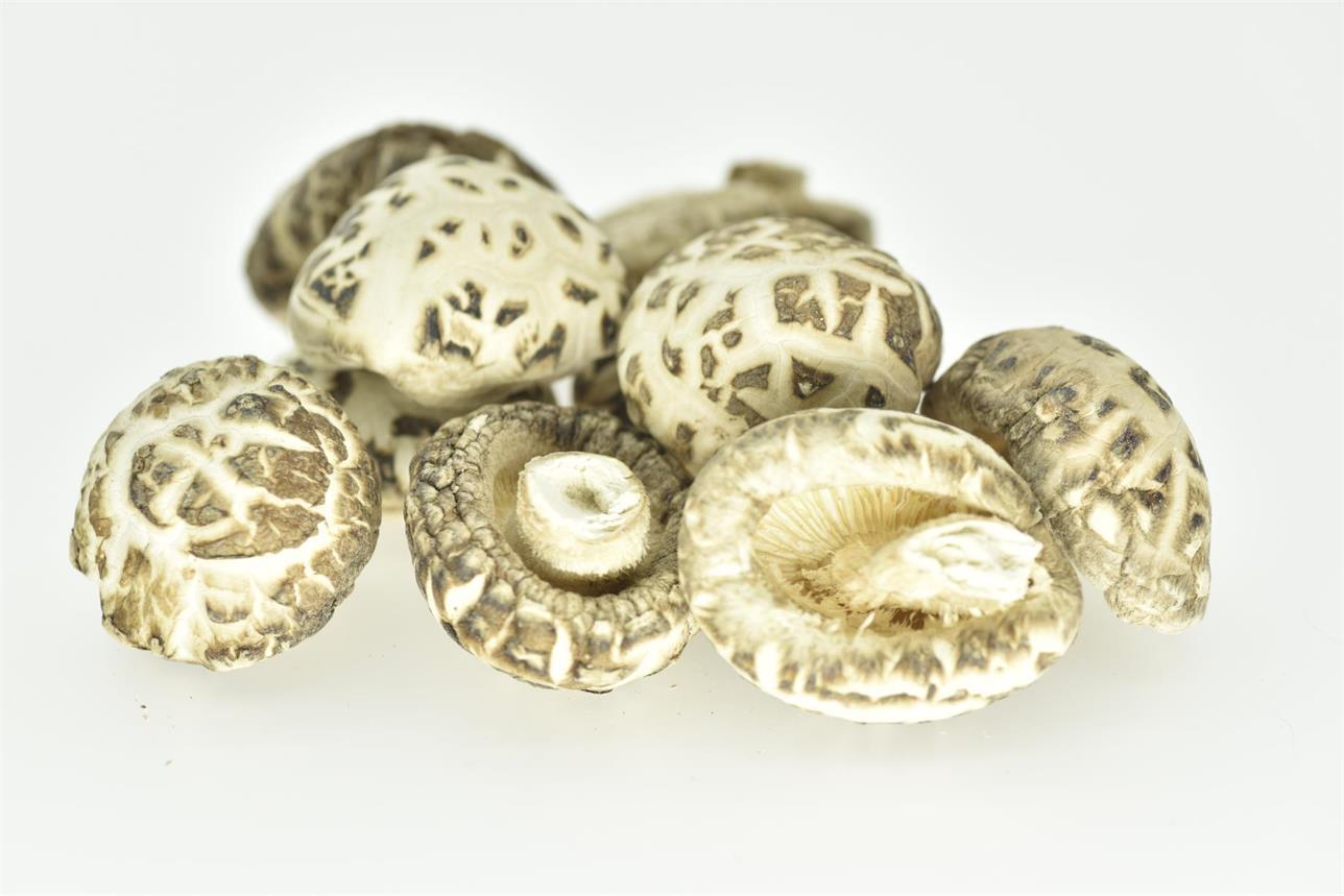 Dried Mushroom White Flower, Mushroom Shiitake Mushroom
