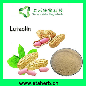 Natural peanut shell extract luteolin 98%