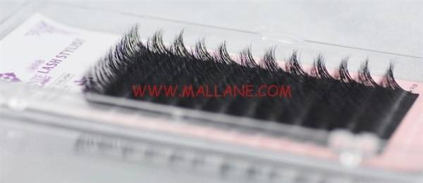 Qingdao Factory Most Popular Eyelash Individual Real Mink Fur Eyelash Extensions