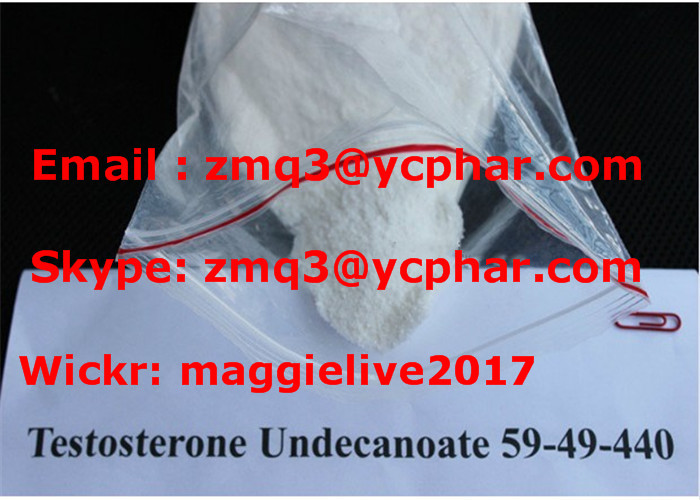 Supply Muscle Building Steroids Testosterone Undecanoate CAS 5949-44-0
