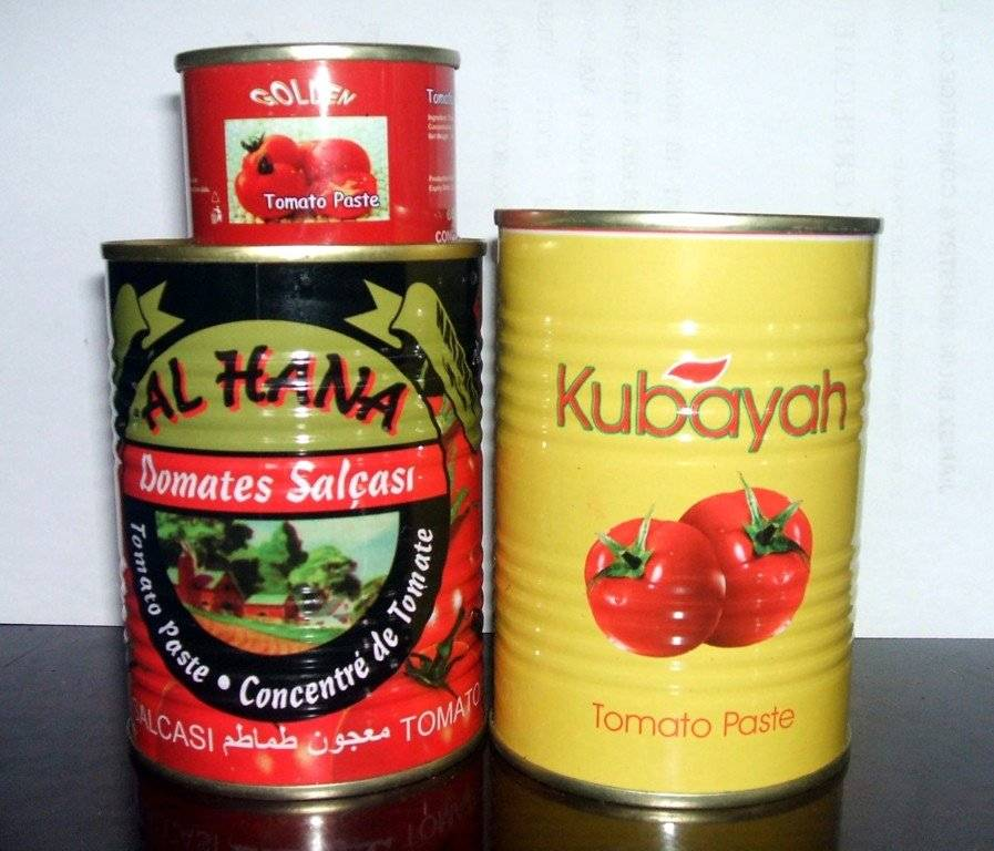 Hot Sell Canned Tomato Paste,Tomato Sauce,Tomato Ketchup
