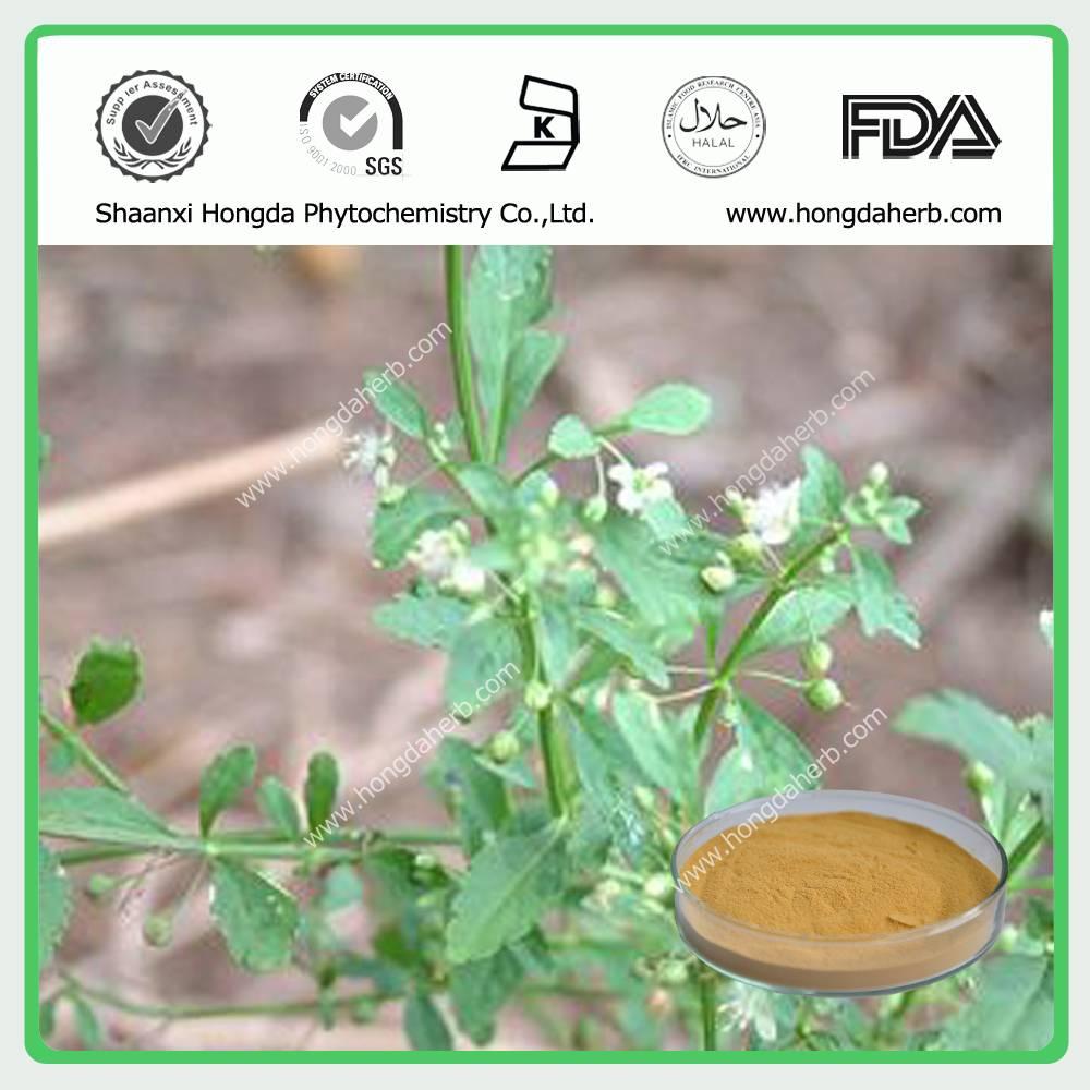 Licorice Extract Powder 100%pure powder Glabridin/ Glycyrrhizinic
