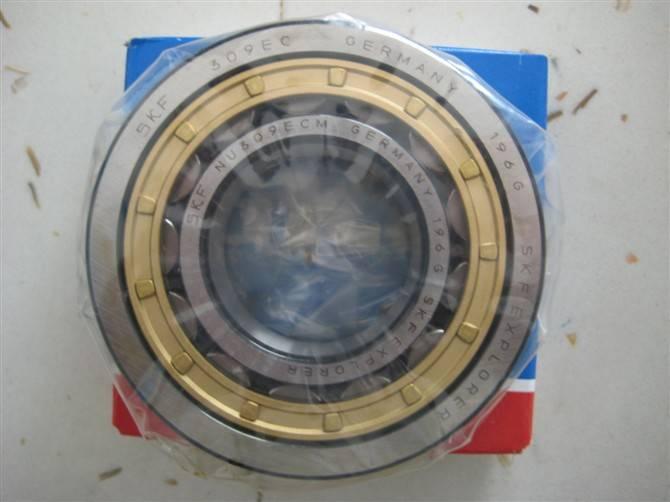 Original Packing Cylindrical roller bearing N303ECP