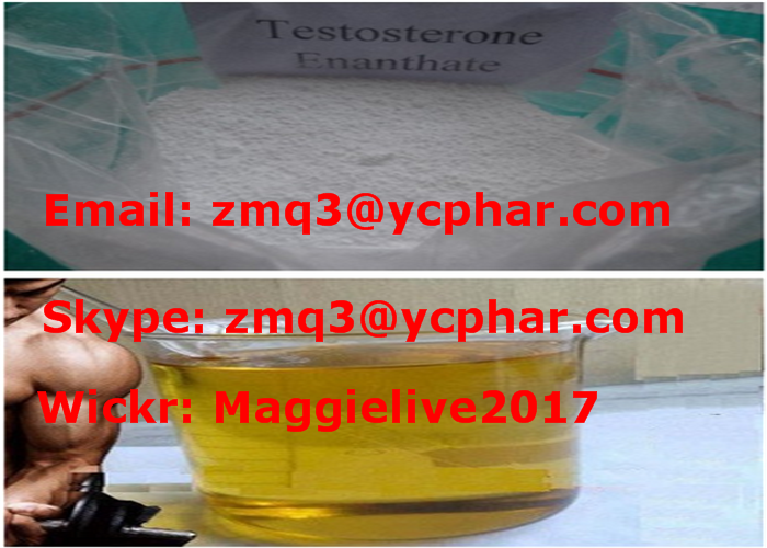 Enanject 250 Steroid Liquid Test E 250mg/Ml Testosterone Enan