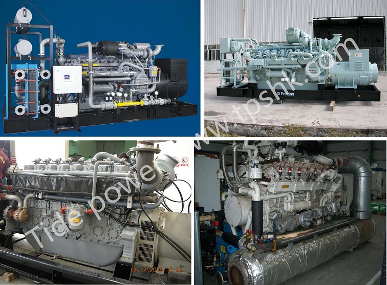 Perkins Gas Generator Set Tide Power