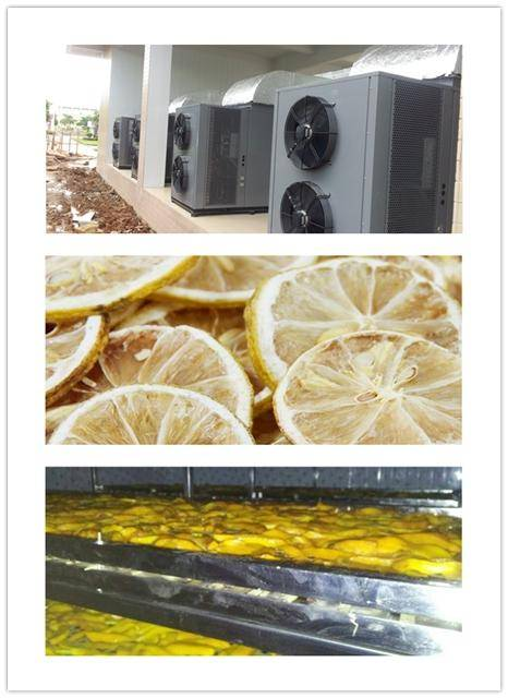 Lemon Slice Dryer Machine Air Source Drying Equipment For Sale, Hot Air Circulation System, Mango Sl