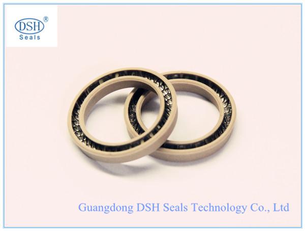 PTFE spring seals,spring energized seal