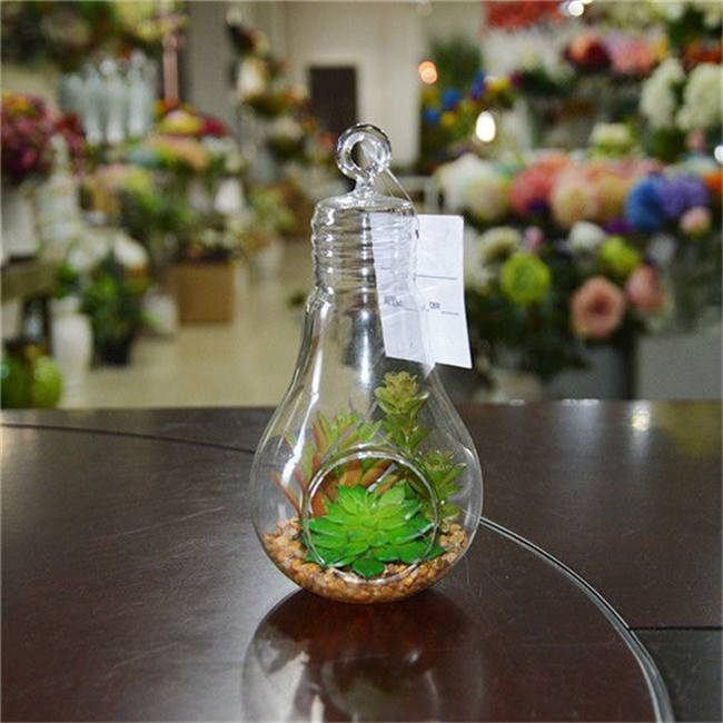 Artificial Hanging Bubble Succulent Terrarium for Home Decoration
