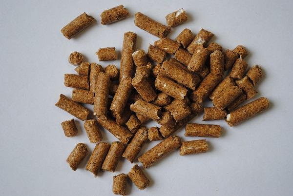 Wheat bran FOB Novorossiysk Russia