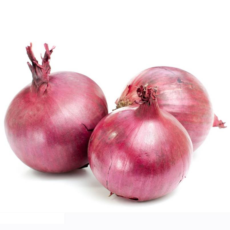 2013 high quality fresh red onion from China