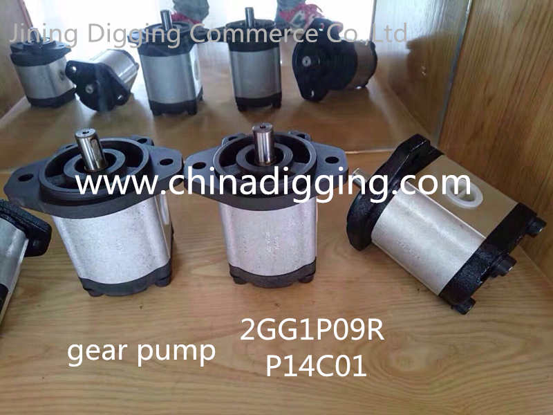 2GG1P09R P14C01 excavator gear pump