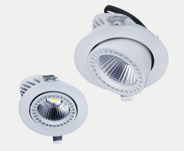 7w/10w/20w/30w/50w led spot light COB ceiling light CE ROHS in high quality used in hotel,office,sch