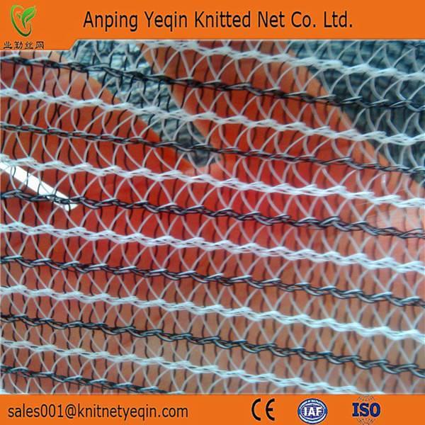 International standards of safety net