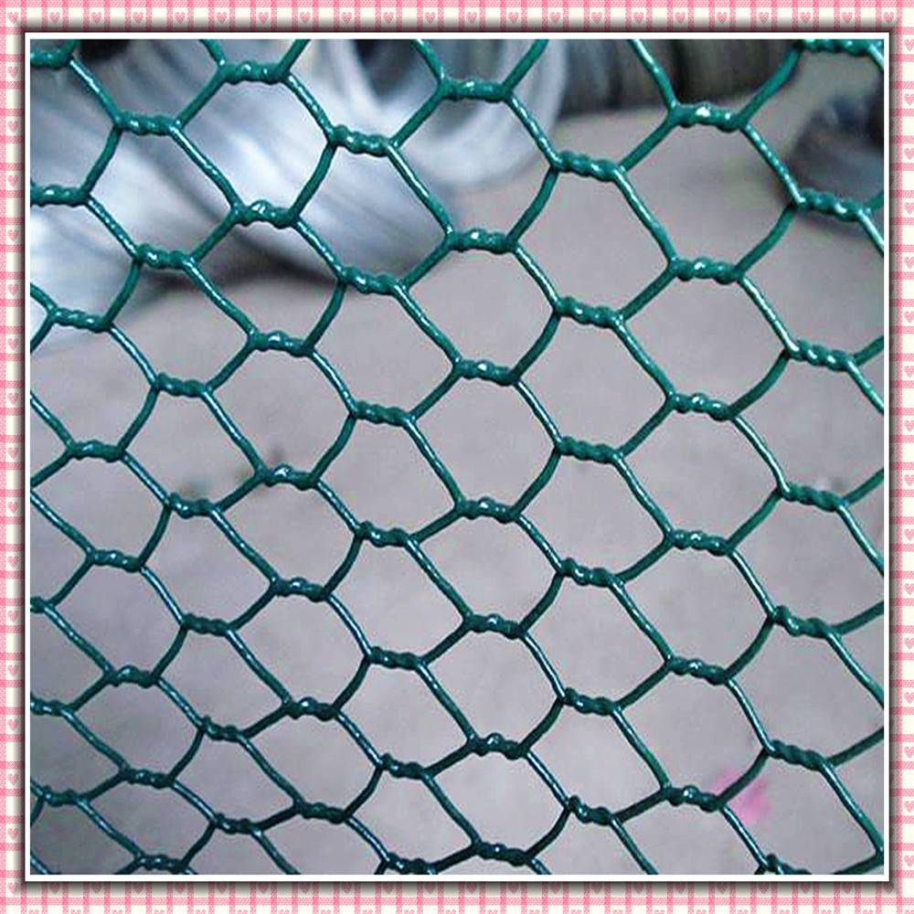 Widely Application Chicken Wire/ Galvanised PVC Coated Hexagonal Wire Mesh( ISO 9001)