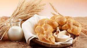 WHEAT FLOUR / WHEAT BRAN / Hard Wheat Grain / Whole Wheat Flour / WHEAT FLOUR