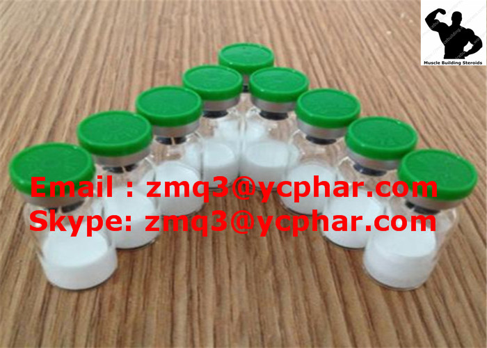 Selank Anti-Anxiety Peptides