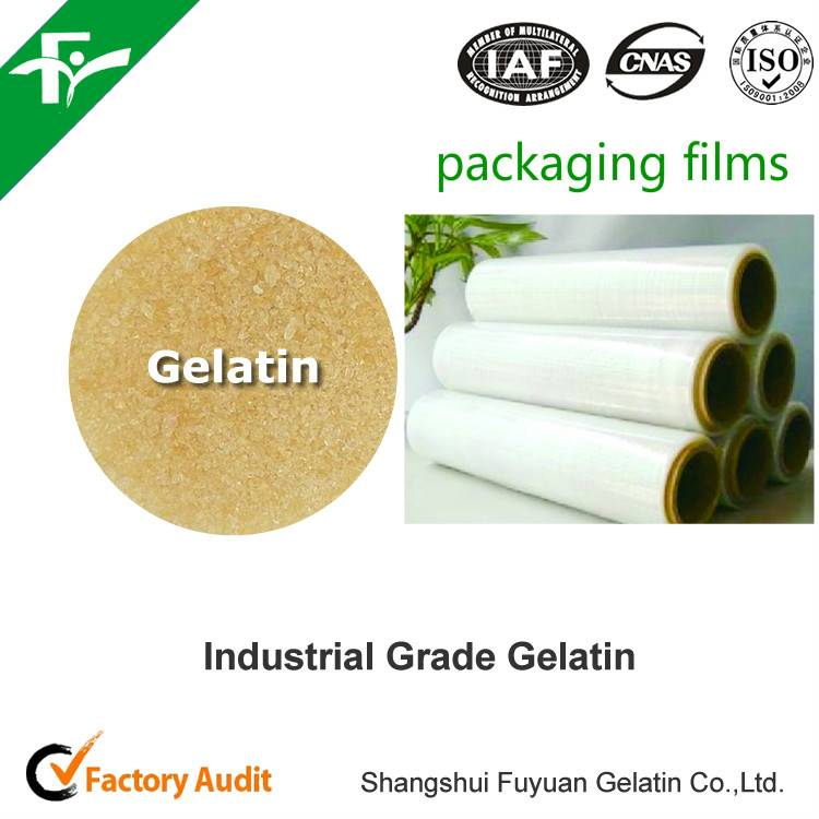 High Quality Industrial Gelatin For Paper Making
