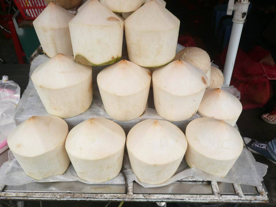 EXPORT FRESH COCONUT FROM VIETNAM