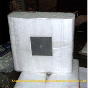 Refractory Bio-Soluble Fiber Module