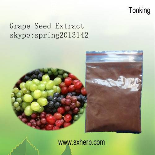 100% Organic Standardized For OPC95% Grape Seed Extract