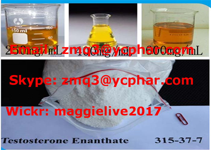 99% Purity Bodybuilding Steroid Powder Testosterone Enanthate /Test E Chemical