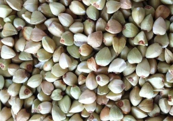 Chinese Buckwheat Kernels