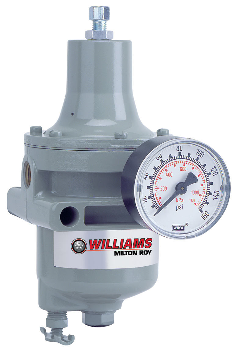 Williams Pneumatic Metering Pump