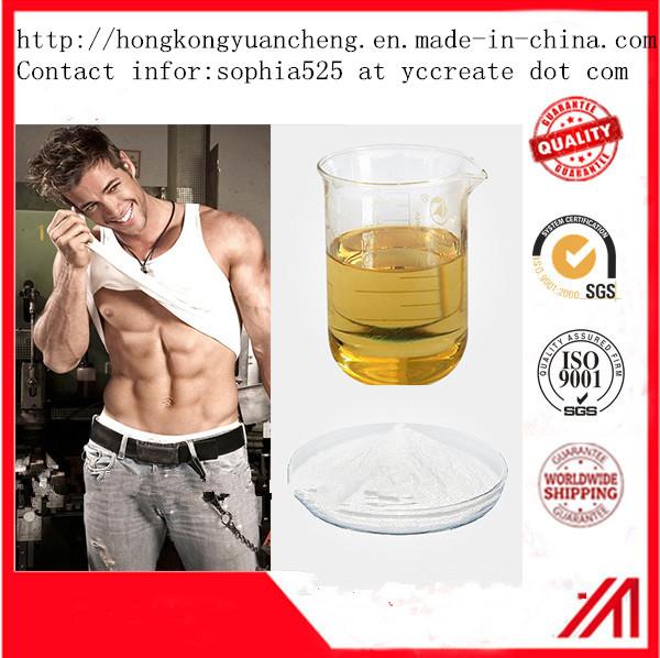 99.5% Steroids Hormones Dehydroisoandrosterone 3-Acetate 99.5% Steroids 853-23-6