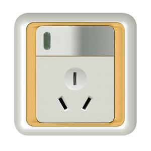British Wall Switch with Socket  (ES5062)